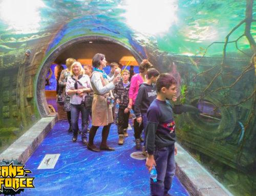 Экскурсионная программа «Тайны двух океанов»